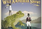 Andy Offutt Irwin – Andy's Wild Amphibian Show!